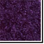 PG-purplepearl
